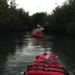 Kayaking in Thousand Islands